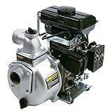 pentair water 1541a-sp 2.5 HP, Aluminum Gas Engine Driven Transfer Pump