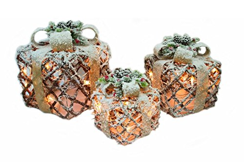 CN & CS Set of 3 Natural Rattan Boxes with 35L Indoor/Outdoor Clear Lights, 6