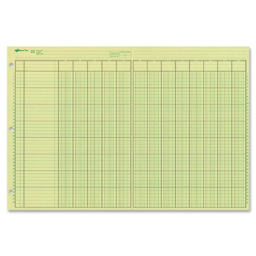 (NATIONAL Analysis Pad, 13 Columns, Green Paper, 11 x 16.375
