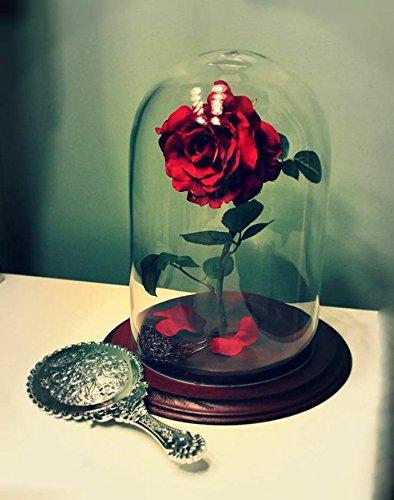 Cloche Verre Illuminee Led Et Rose Naturelle Eternelle La Belle