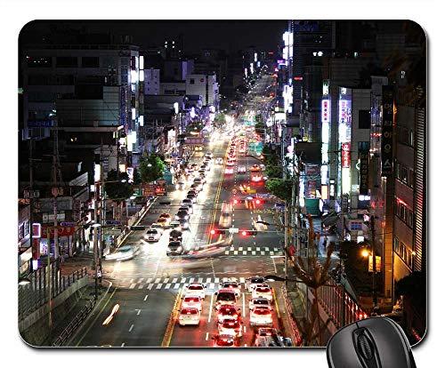 Nightlife Landscape Lighting in US - 4