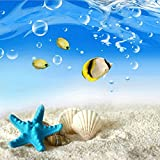 DIY 5D Diamond Painting by Number Kits, Crystal Rhinestone Diamond Embroidery Paintings Pictures Arts Craft for Home Wall Decor, Full Drill Canvas,Beach Starfish shell (LX-140HBBK-11.8x11.8in)