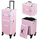 Mefeir 2-in-1 Rolling Train Case,Makeup Travel Cosmetic Trolley Beauty Organizer,4 Wheels Removable with 4 Keys+Strap+Mirror (Pink)
