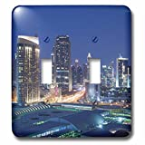 3dRose Danita Delimont - Cities - UAE, Downtown Dubai. Dubai Mall - Light Switch Covers - double toggle switch (lsp_277101_2)