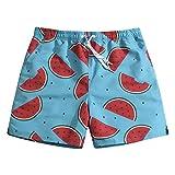 Men's Ultra Quick Dry Summer Fruits Board Shorts Watermelon Small 31-32