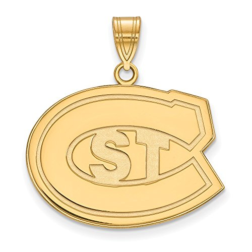 10k Yellow Gold LogoArt Official Licensed Collegiate St. Cloud State University (SCSU) Large Pendant by Logo Art