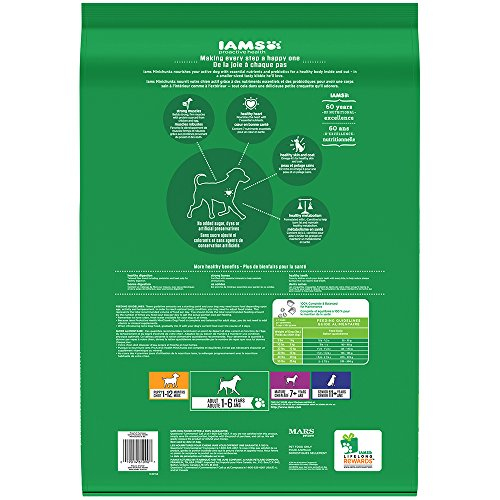 IAMS-PROACTIVE-HEALTH-Adult-MiniChunks-Dry-Dog-Food-15-Pounds