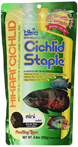 Hikari 8.8-Ounce Cichlid Staple Floating Pellets for Pets, Mini