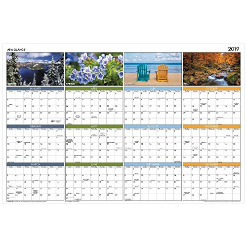 AT-A-GLANCE 2019 Yearly Wall Calendar, 36 x 24, Large, Erasable, Dry Erase, Vertical/Horizontal Seasons in Bloom (PA133)