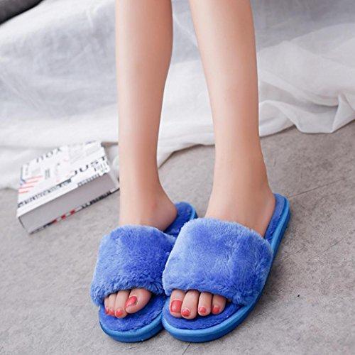 DM&Y 2017 Word interior de felpa par de zapatillas casa zapatillas de felpa Blue