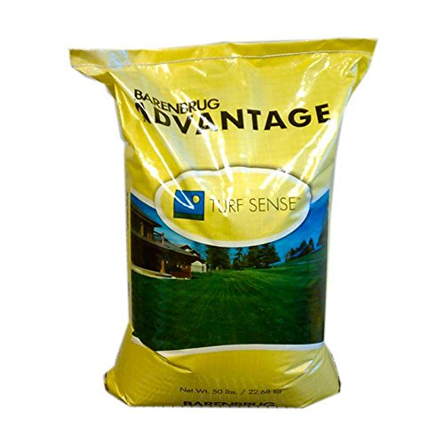 Barenbrug 50 lb. Pinnacle III Perennial Ryegrass Seed (Green Pinnacle Grass)