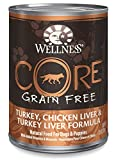 Wellness CORE Natural Wet Grain Free Canned Dog Food, Turkey & Chicken, 12.5-Ounce Can (Pack of 12)