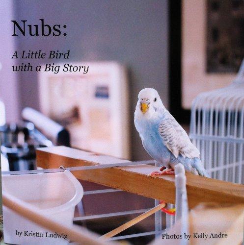 Nubs: A Little Bird with a Big Story