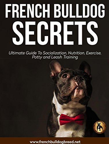 French Bulldog Secrets: The Ultimate Guide: Nurturing And Training A French Bulldog (English Edition)