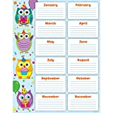 owl birthday chart for classroom - Teacher Created Resources Colorful Owls Birthday Chart by 3D HOME SOLUTIONS LLC
