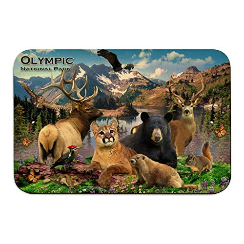 GRAPHICS & MORE Olympic National Park Washington WA Animals Cougar Bear Elk Beaver Home Business Office Sign - Wood - 6