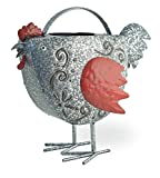 Boston International SIN18223 Celebrate The Home Metal Watering Can, Berty Red Hen