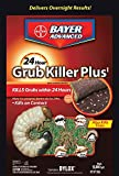 Bioadvanced 700745s 24 Hour Grub Killer Plus, Granules, 20 Lb
