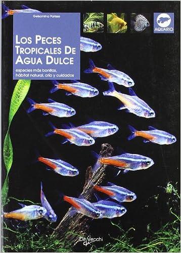 Los peces tropicales de agua dulce (Animales): Amazon.es: Gelsomina ...