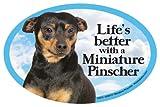 Miniature Pinscher Oval Dog Magnet for Cars