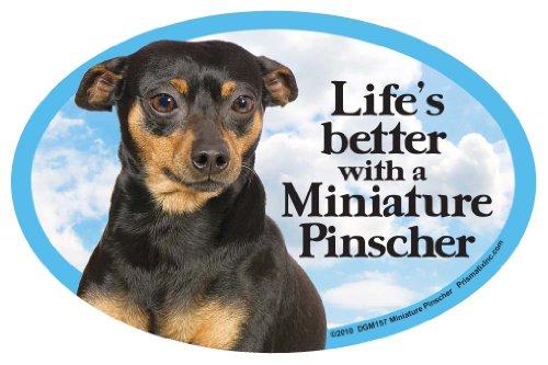 Prismatix Miniature Pinscher Oval Dog Magnet for Cars