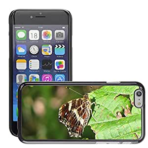Hot Style Cell Phone PC Hard Case Cover // M00112389 Butterfly European Map Forest Meadow // Apple iPhone 6 4.7""