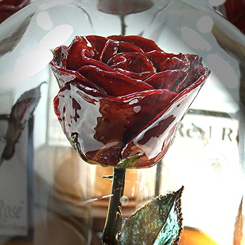 Forever Rose USA Brand - The Beauty and the Beast Rose - Enchanted Rose - This is a Real Rose! … (Burgundy) by The Forever Rose