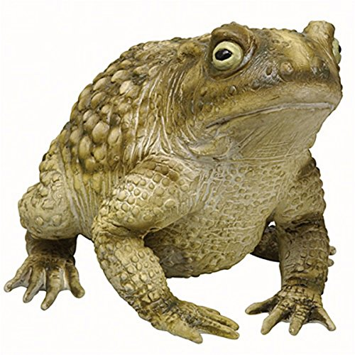 Latex Frog - Foam Toad Statue - ST