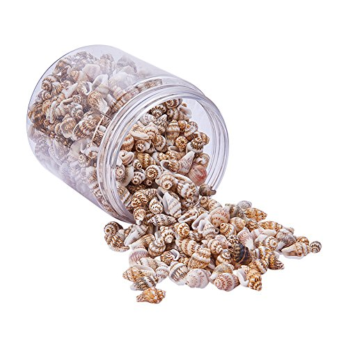 PandaHall Elite About 650-750 Pcs Tiny Sea Shell Ocean Beach Spiral Seashells Craft Charms Length 11-15mm for Candle Making, Home Decoration, Beach Theme Party Wedding Decor, Fish Tank and Vase Fille
