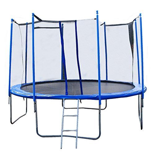 14FT Round Trampoline with Enclosure, Net W/ Spring Pad Ladder by BestMassage