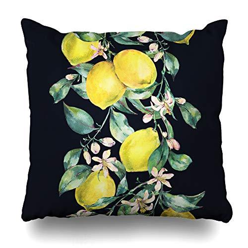 Ahawoso Throw Pillow Cover Square 16x16 Inches Lemon Green Botanical Watercolor Vintage Border Branch Nature Citrus Aquarelle Yellow Color Cut Decoupage Juicy Cushion Case Home Decor Pillowcase