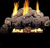 Peterson Gas Logs CHTG10-30-15