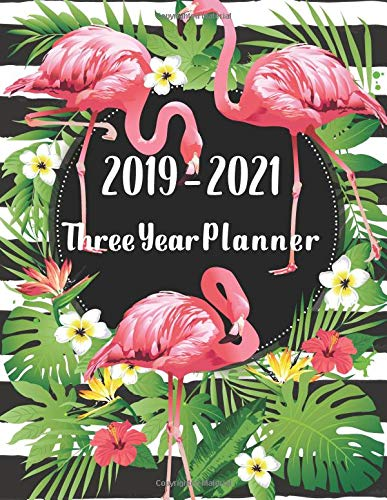 2019-2021 Three year planner: 36 months calendar January 2019 - December 2021 Work, goal, passion and to do list with schedule organizer for work and school