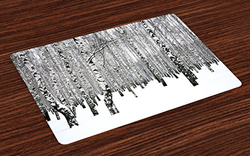 Leafless Tree Branches (Winter Place Mats Set of 4 by Lunarable, Winter Birch Grove in the Forest with Leafless Tree Branches Scenic Nature Image, Washable Placemats for Dining Room Kitchen Table Decoration, Brown White)