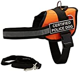 Dean & Tyler's DT Works Orange ''CERTIFIED POLICE DOG '' Harness with Chest Padding, Large, and Black 6 ft Padded Puppy Leash.