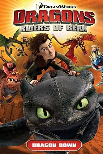 Dragons: Riders of Berk Vol. 1: Dragon Down (Dragon 1)