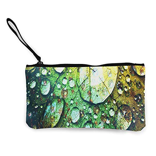Coin Purse Rainbow Leaf with Water Drops Women Zip Canvas Wallets ChangeDesigner Bag -