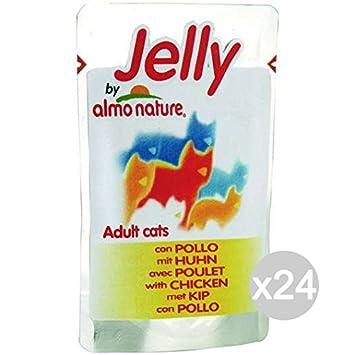 Almo nature Juego 24 Gato 5057 Sobres 75 Jelly Pollo Comida para Gatos: Amazon.es: Productos para mascotas