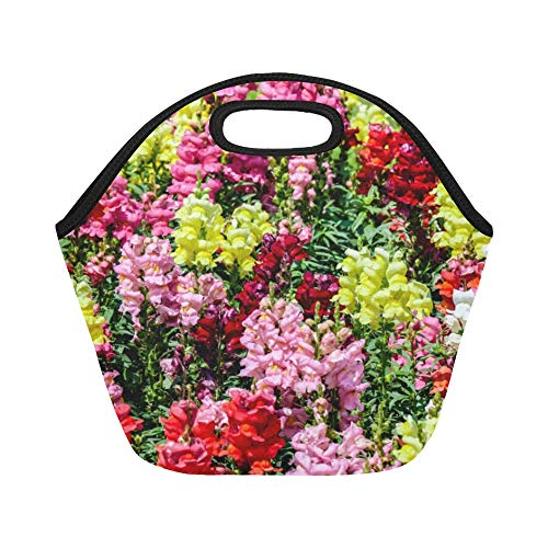 Insulated Neoprene Lunch Bag Snapdragon Red Vintage Flower Large Size Reusable Thermal Thick Lunch Tote Bags For Lunch Boxes For Outdoors,work, Office, School