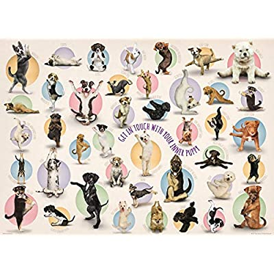 EuroGraphics Yoga Puppies 300-Piece Puzzle (Small Box): Toys & Games