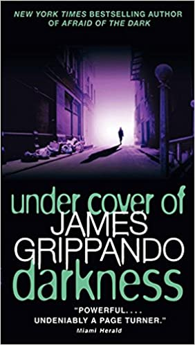 James Grippando - Under Cover of Darkness Audiobook