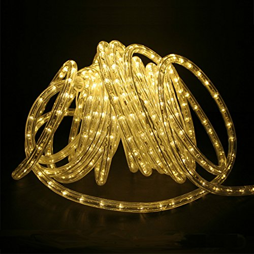 D&D Brand 50FT Warm White LED Rope Light - Expandable to 150 Ft - 120V - 2 Wire -Clear Tubing- UL Listed - Super Sturdy - D With Brands