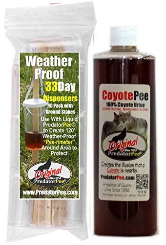 PredatorPee - 100% Pure Coyote Urine - 12oz Squeeze Bottle Combo with 33 Day Dispensers