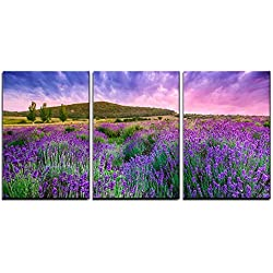 "wall26 - 3 Piece Canvas Wall Art - Sunset over a Summer Lavender Field in Tihany, Hungary- This Photo Make Hdr Shot - Modern Home Decor Stretched and Framed Ready to Hang - 24""x36""x3 Panels"