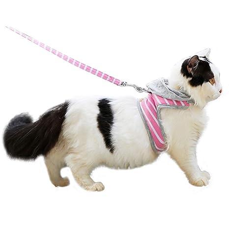 HEEPDD Arnés para Gatos, Ajustable A Prueba de Fugas Gato para ...