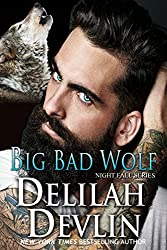 Big Bad Wolf (Night Fall Book 13)