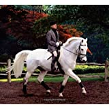 Dressage Principles Illuminated