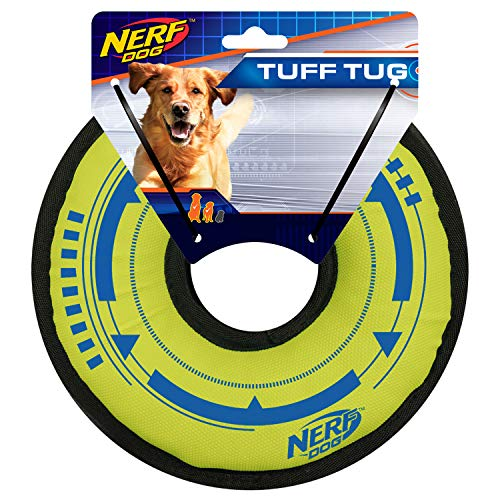 Nerf Dog 9in Trackshot Cyclone Ring: Blue/Green, Dog Toy