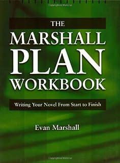 Novel writing plan