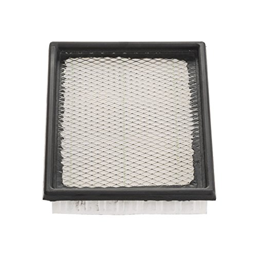 Champion CAP7597 Engine Air Filter